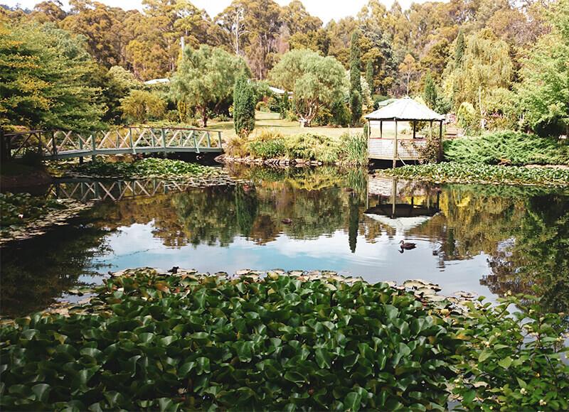 Private Garden, South Spreyton, Tasmania